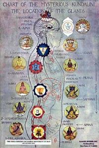Kundalini en de chakra's